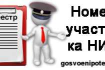 Стоит ли заново собирать документы, если в часть не пришел номер участника НИС