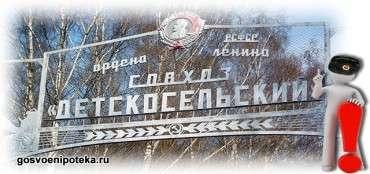 обеспечение жильём в Детскосельском