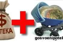 Возможно ли при покупке квартиры по НИС вложить материнский капитал
