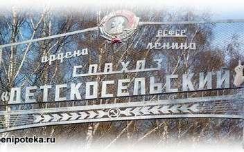 Детскосельский район СПБ - выбор новостройки